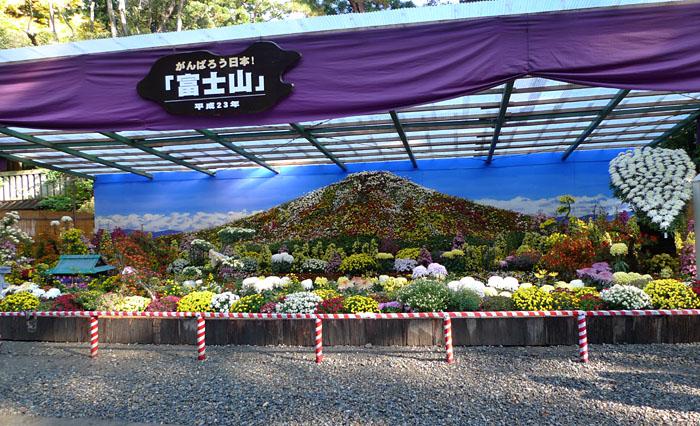 新潟 弥彦神社 菊花展 H23