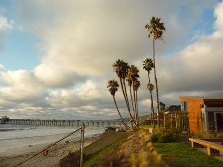 UCSD beach