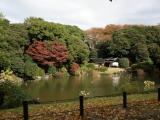 国立博物館の庭園
