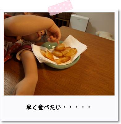 [photo02233176]P9303071