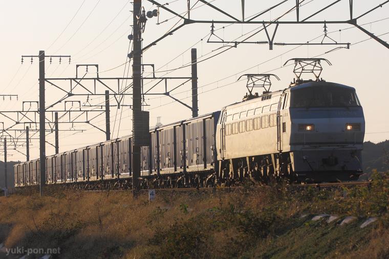 2009102701.jpg