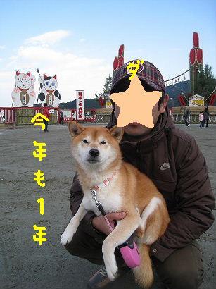 IMG_1001-2.jpg