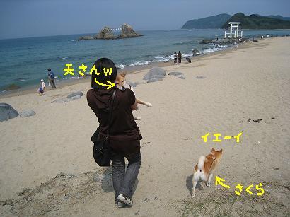 IMG_9107-2.jpg