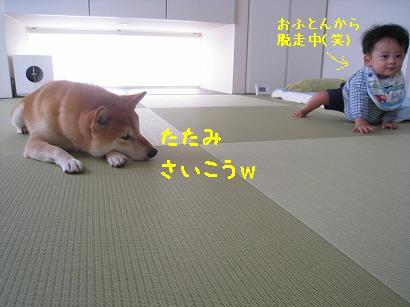 IMG_9722-2.jpg