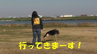 2_20101128190950.jpg
