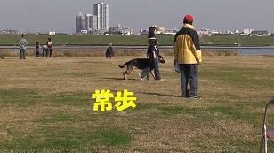 2_20101129123704.jpg