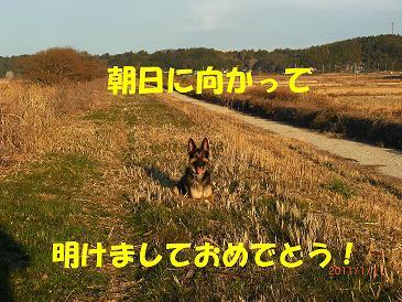2_20110101165343.jpg
