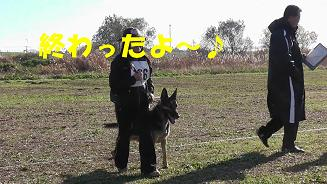6_20101205211822.jpg