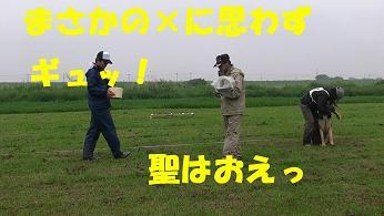 M1560021s.jpg