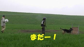s_20100523231137.jpg