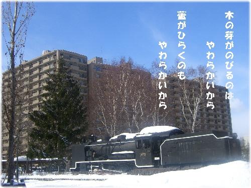 02026.jpg