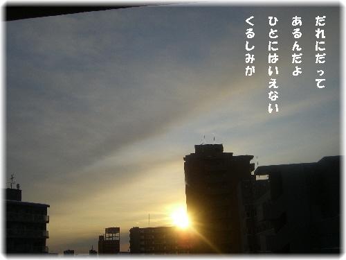0255.jpg