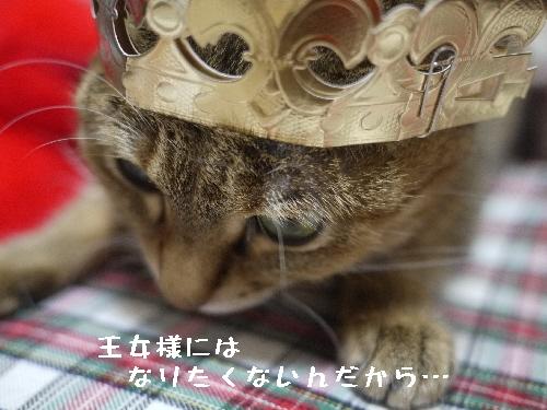 王女様モカ