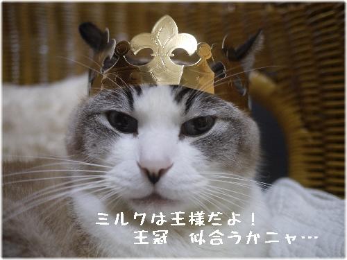 ミルク王様