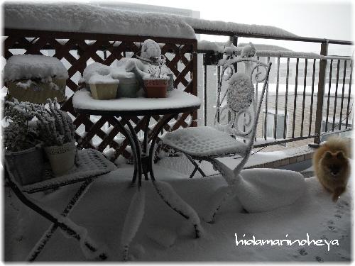 雪が積もったベランダ