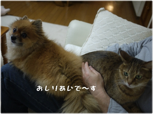 ゆめ&モカ