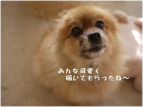 ゆめ110322