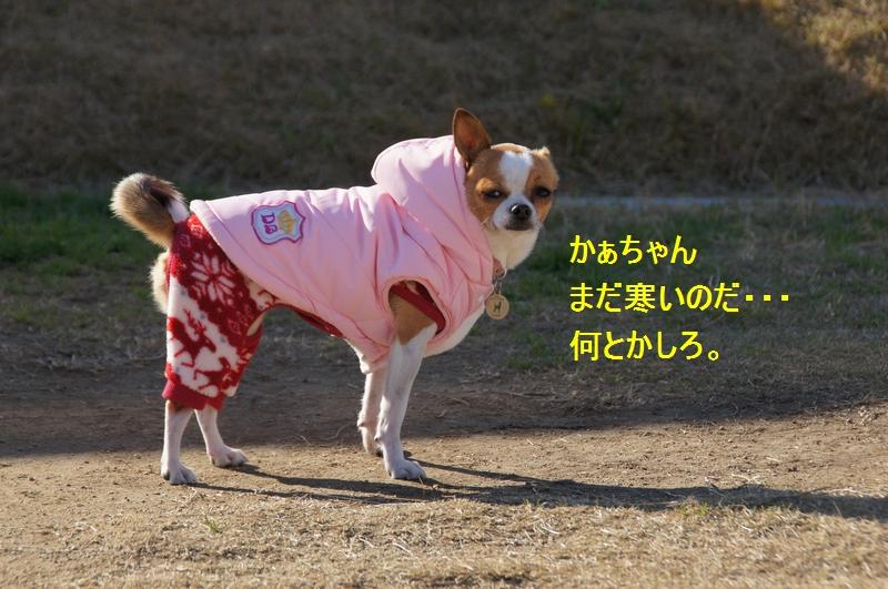 10_20111229084801.jpg