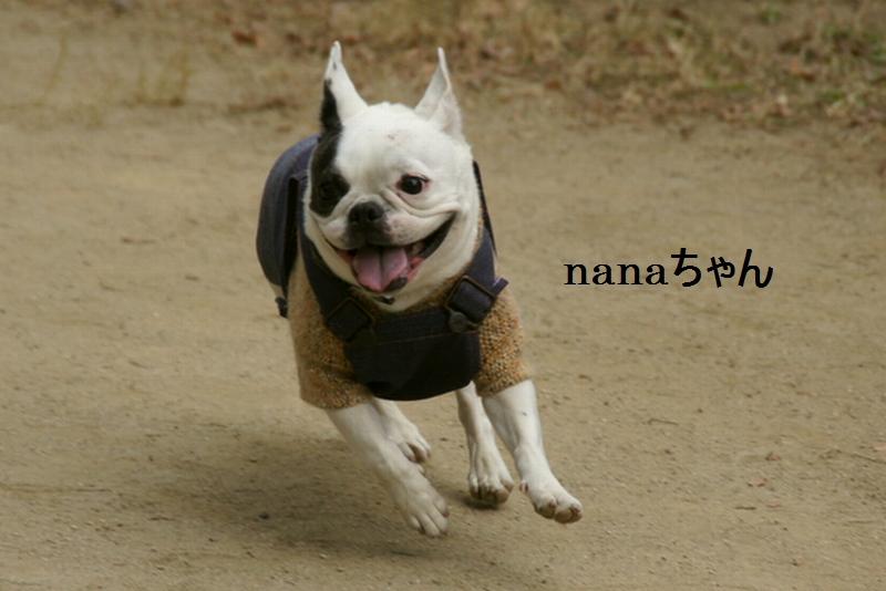 10_20120105161257.jpg