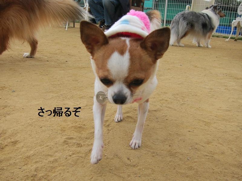 10_20120112110028.jpg