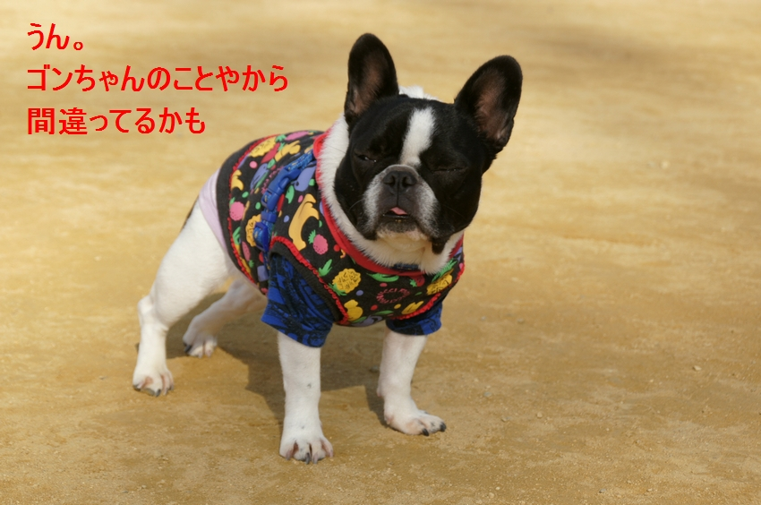 12_20111221131052.jpg