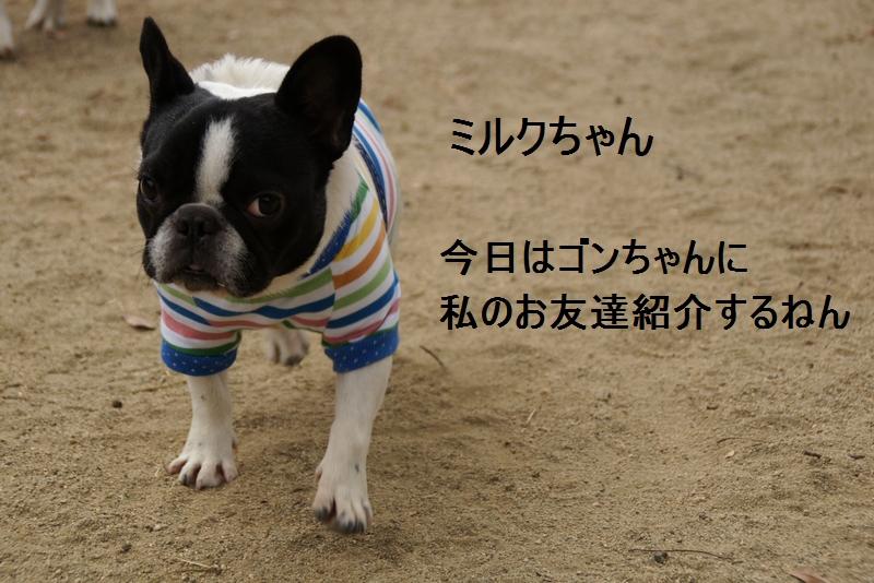 13_20120105162005.jpg