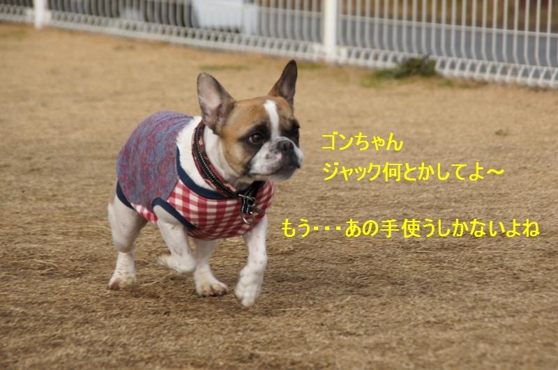 14_20120123214311.jpg