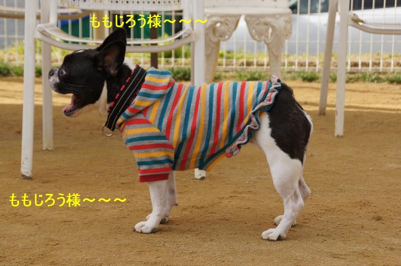 15_20120123214310.jpg