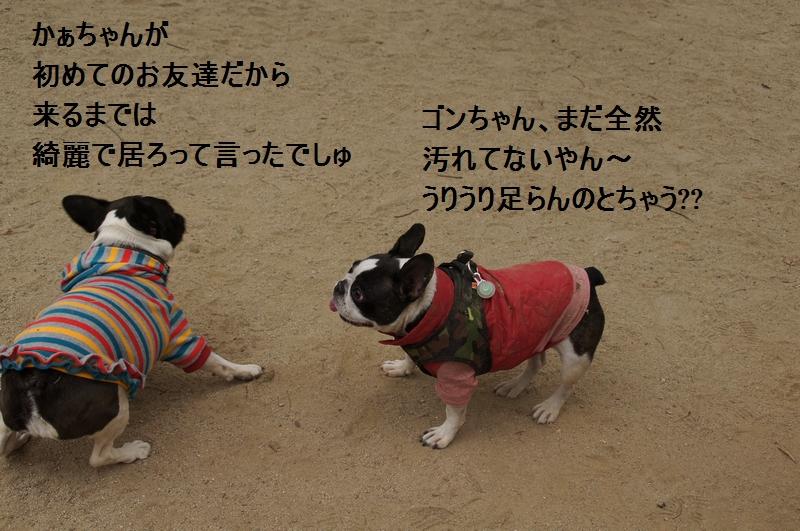 18_20120105162559.jpg