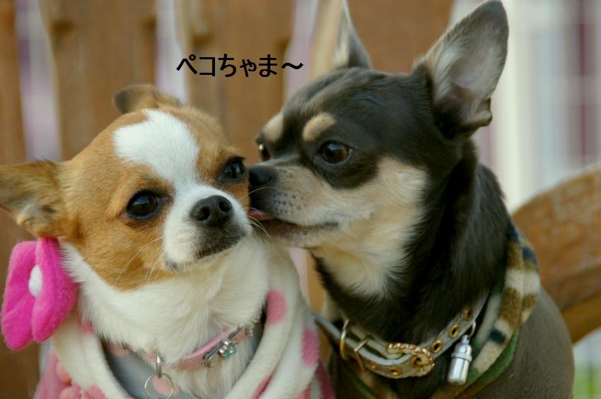 20_20111221131910.jpg