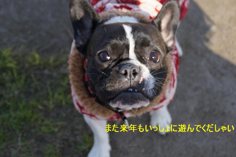 21_20111229085853.jpg