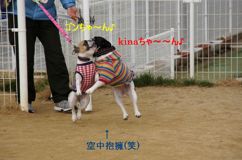 2_20120123211446.jpg
