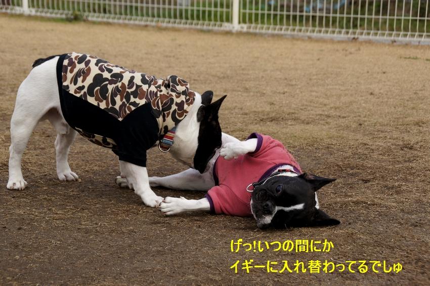 8_20111212194127.jpg