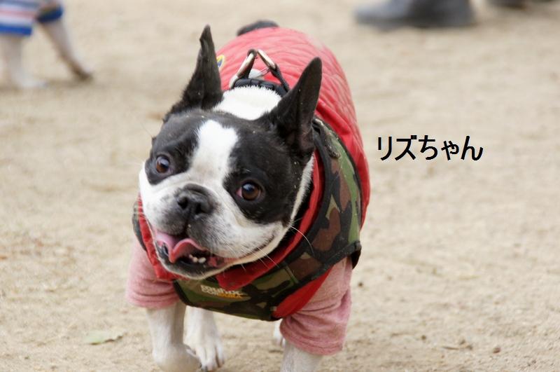8_20120105161257.jpg