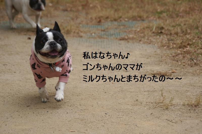 9_20120105161257.jpg