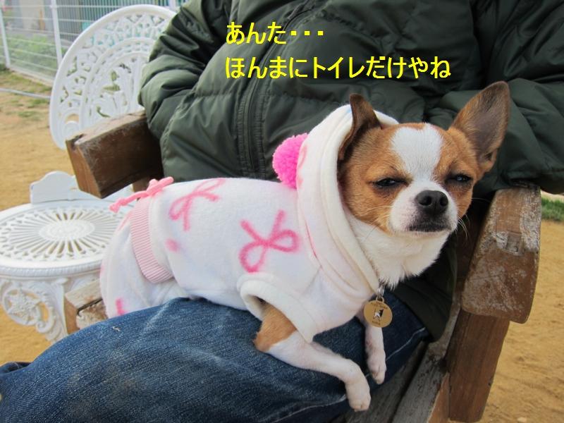 9_20120112110029.jpg
