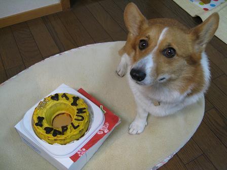 7歳誕生日ケーキ