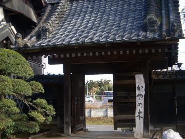 kayanoki20110202mini.jpg