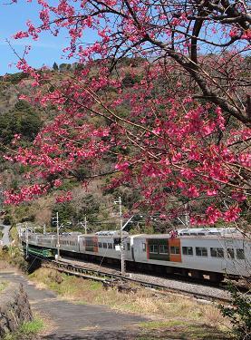 大川駅周辺の長閑な景色