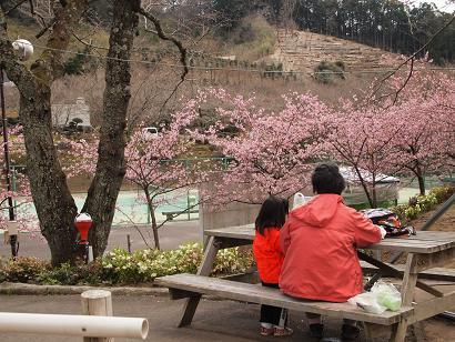 おばあちゃんと花見をしながらのお昼