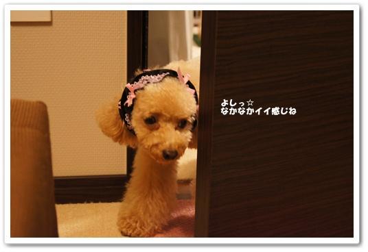 201108025yuzu3.jpg