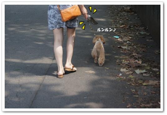 201108027yuzu2.jpg