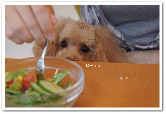 201108031yuzu1.jpg