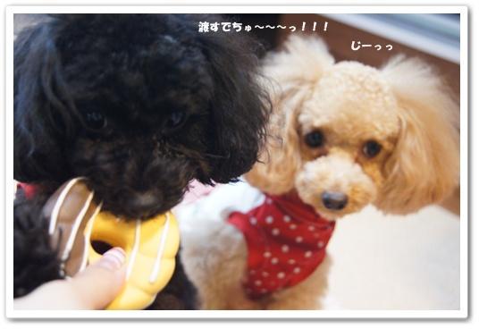 20110902yuzukosyo3.jpg