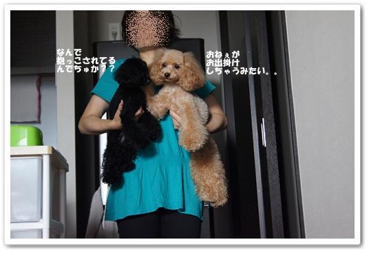 20110907yuzukosyo9.jpg