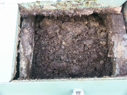 2回目の堆肥