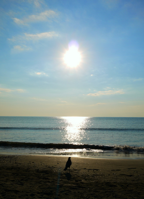 beach-eno-1.jpg