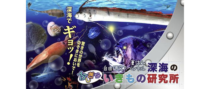 深海-T~1
