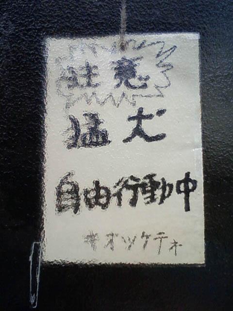 100406ZMD_002.jpg