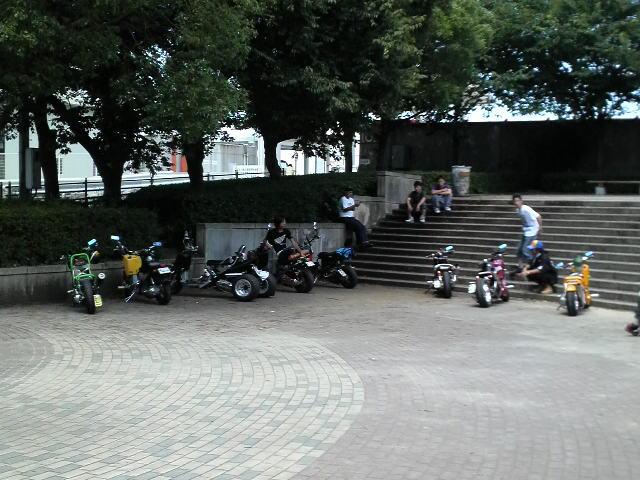 P1002010.jpg